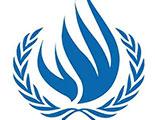 Alto Comisionado de la ONU para los Derechos Humanos (OACDH)